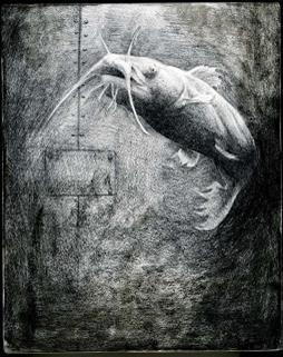 Catfish Tale