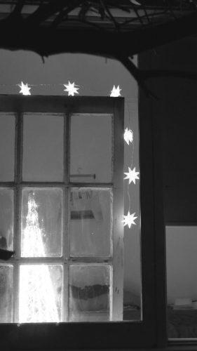 xmas-window-2